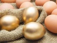I polli dalle uova d'oro
